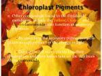 chloroplast pigments1