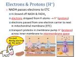 electrons protons h