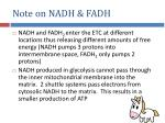 note on nadh fadh