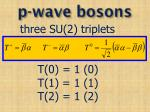 p wave bosons1