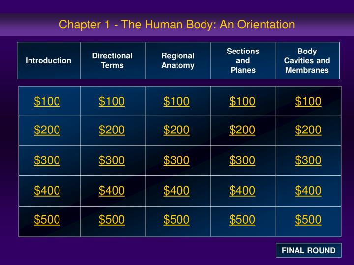 chapter 1 the human body an orientation n.
