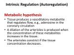intrinsic regulation autoregulation1