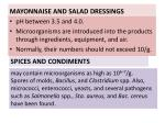 mayonnaise and salad dressings