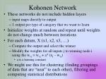 kohonen network