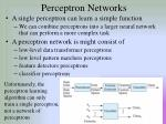 perceptron networks