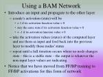 using a bam network1