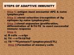steps of adaptive immunity