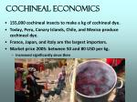cochineal economics