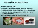 cochineal extract and carmine