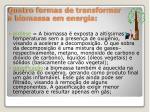 quatro formas de transformar a biomassa em energia