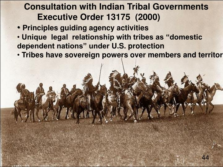 Consultation with Indian Tribal Governments
