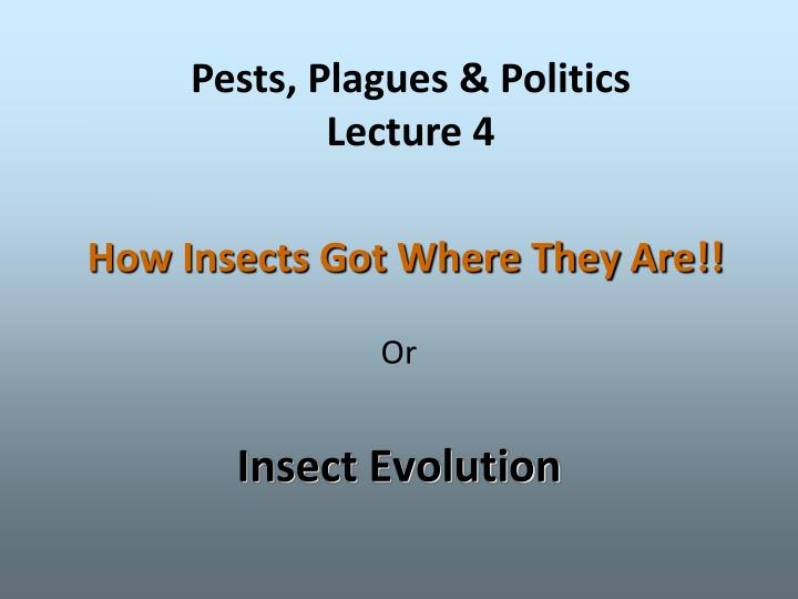how insects got where they are n.