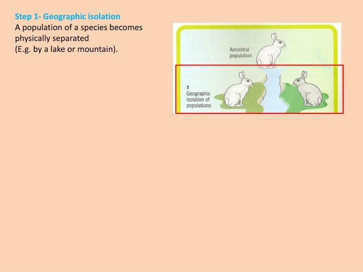 Step 1- Geographic isolation