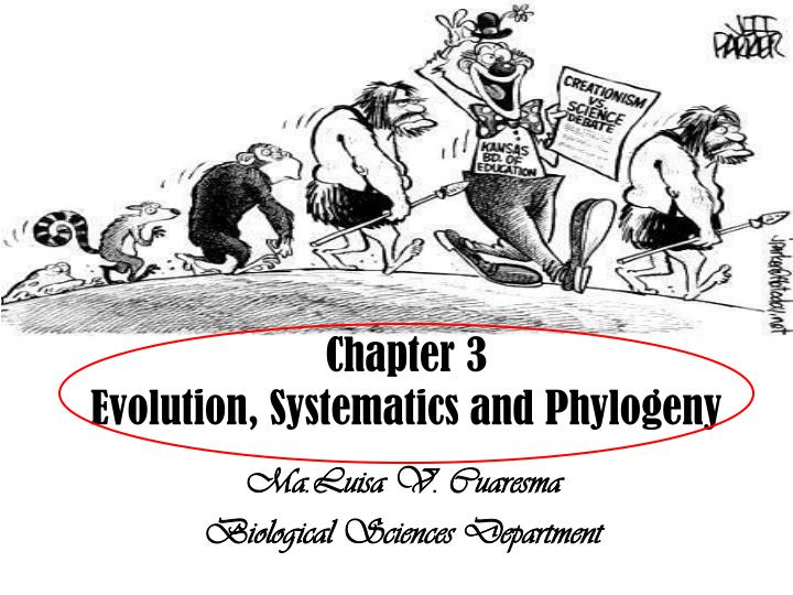 chapter 3 evolution systematics and phylogeny n.