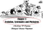 chapter 3 evolution systematics and phylogeny