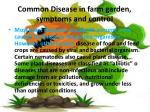 common disease in farm garden symptoms and control