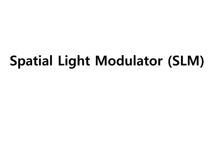 spatial light modulator slm n.