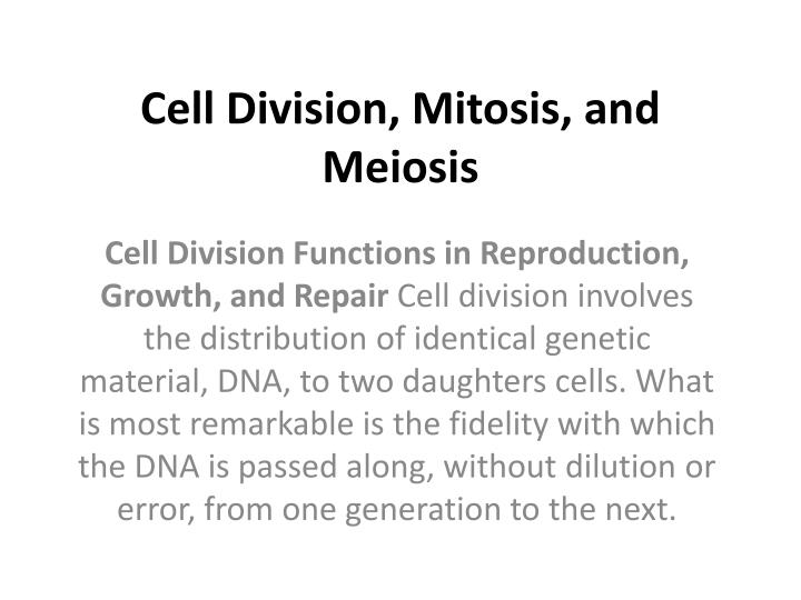 cell division mitosis and meiosis n.
