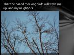 that the dazed mocking birds will wake me up and my neighbors