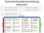 transcribe translate the following sequences
