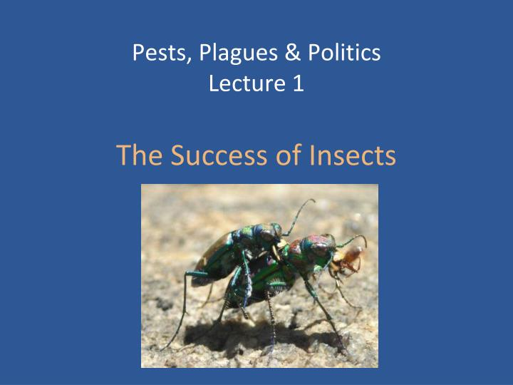 pests plagues politics lecture 1 the success of insects n.