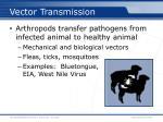 vector transmission