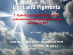 light and pigments1