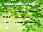 photosynthesis outline