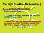 the light reaction photosystem i