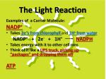 the light reaction1