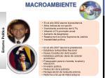 macroambiente