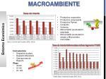 macroambiente4