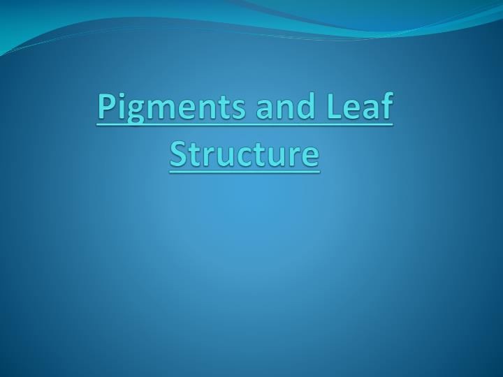 pigments and leaf structure n.