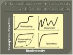 relationships between biodiversity and ecosystem functioning