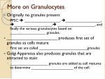 more on granulocytes
