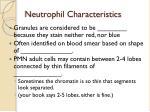 neutrophil characteristics