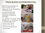 programa experimental1