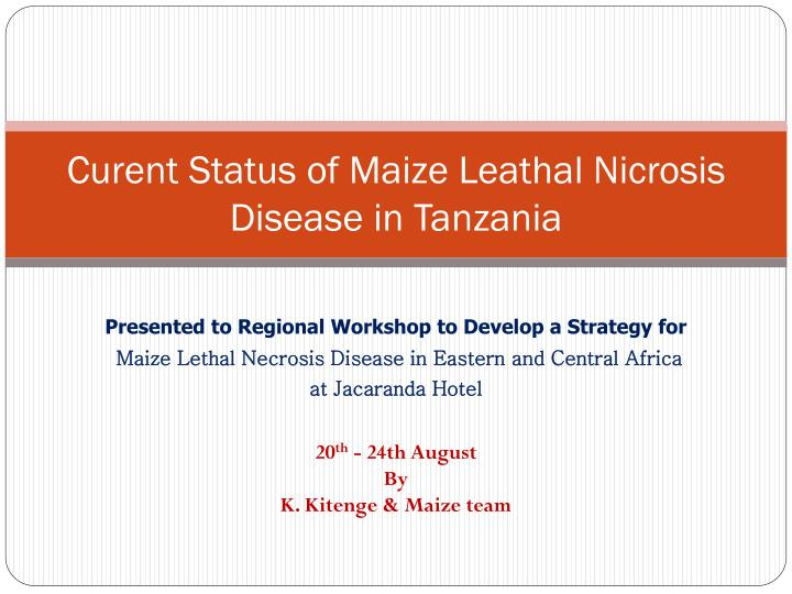 curent status of maize leathal nicrosis disease in tanzania n.