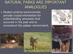 natural parks are important analogues