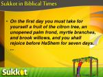 sukkot in biblical times1