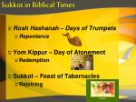sukkot in biblical times4