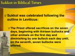 sukkot in biblical times6