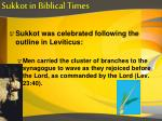 sukkot in biblical times8