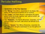 the lulav and etrog2