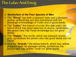 the lulav and etrog3