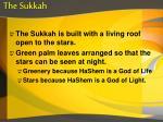 the sukkah2