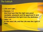the sukkah3