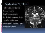 brainstem strokes