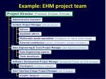 example ehm project team