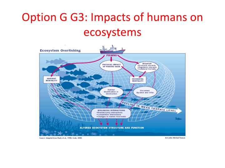 option g g3 impacts of humans on ecosystems n.